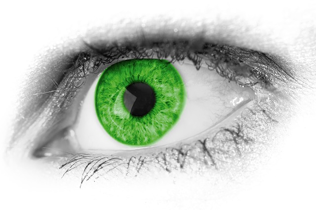 A close up of a bright green eye. For a post about being jealous of a girlfriend's dildo