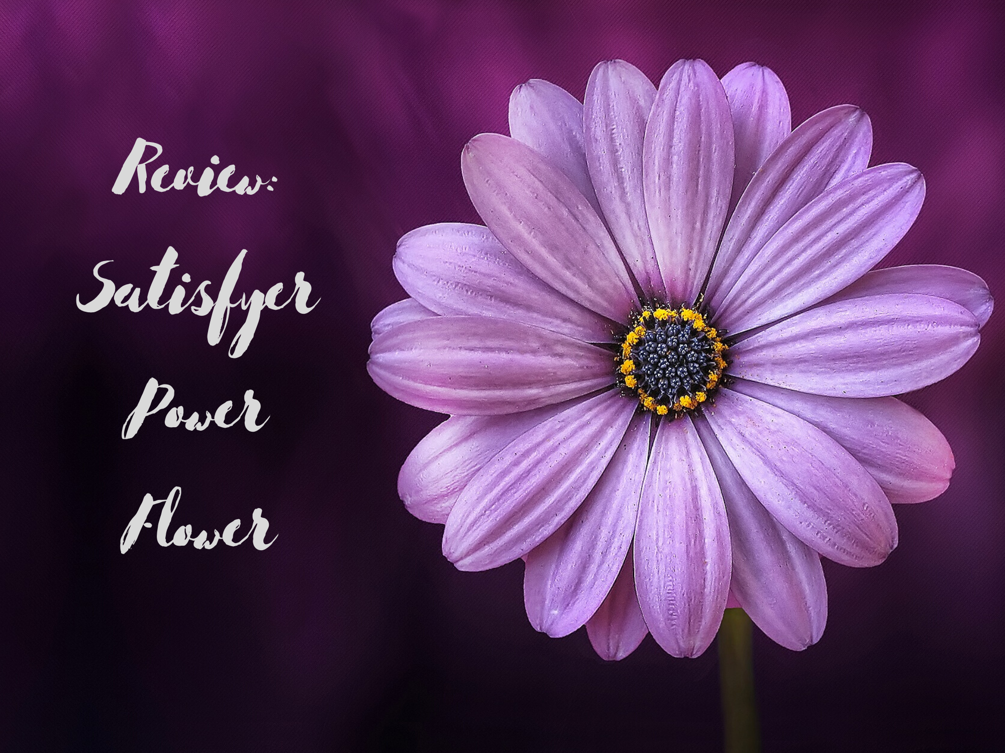 [Toy Review] Satisfyer Power Flower