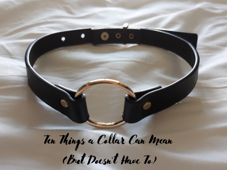 Close up of a black collar. For a post on ten things a collar can mean