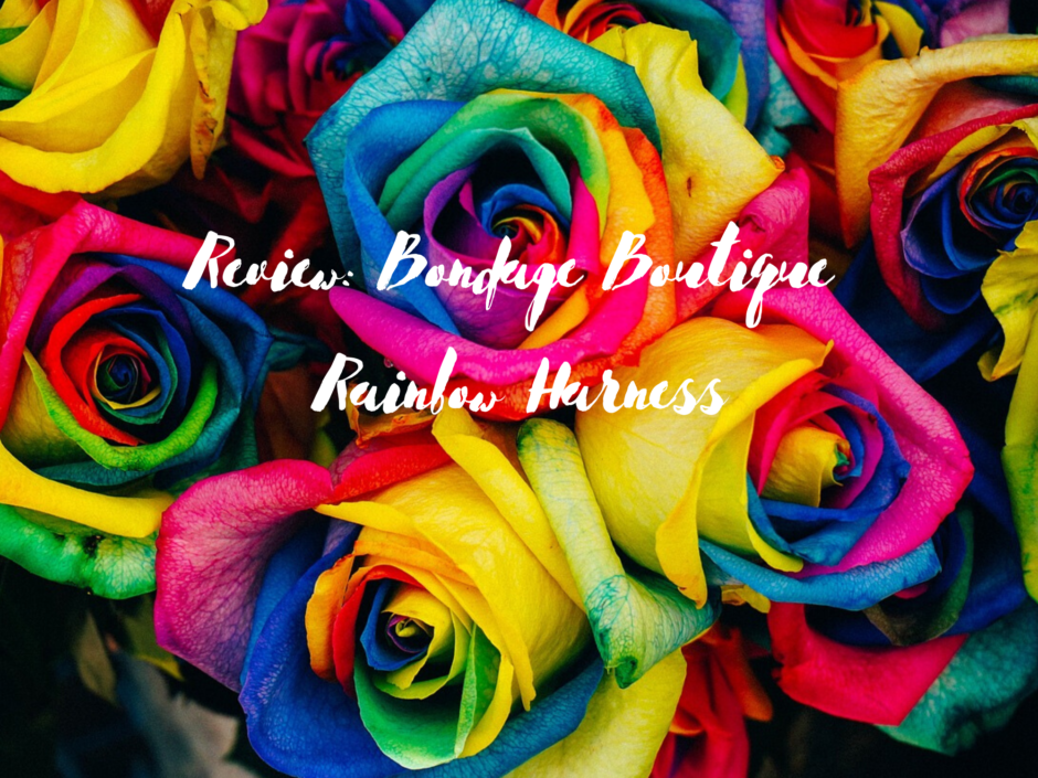 Bright multicoloured roses. Header image for a review of the Bondage Boutique rainbow harness