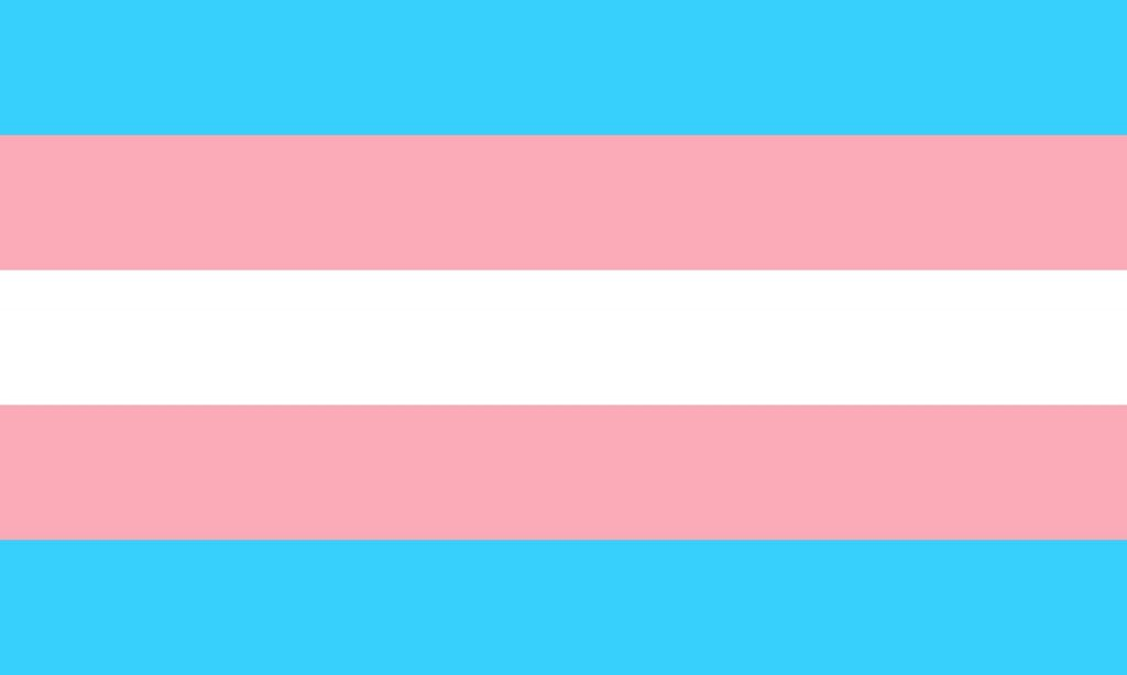 The trans pride flag, for a post about transphobia in sex positive spaces