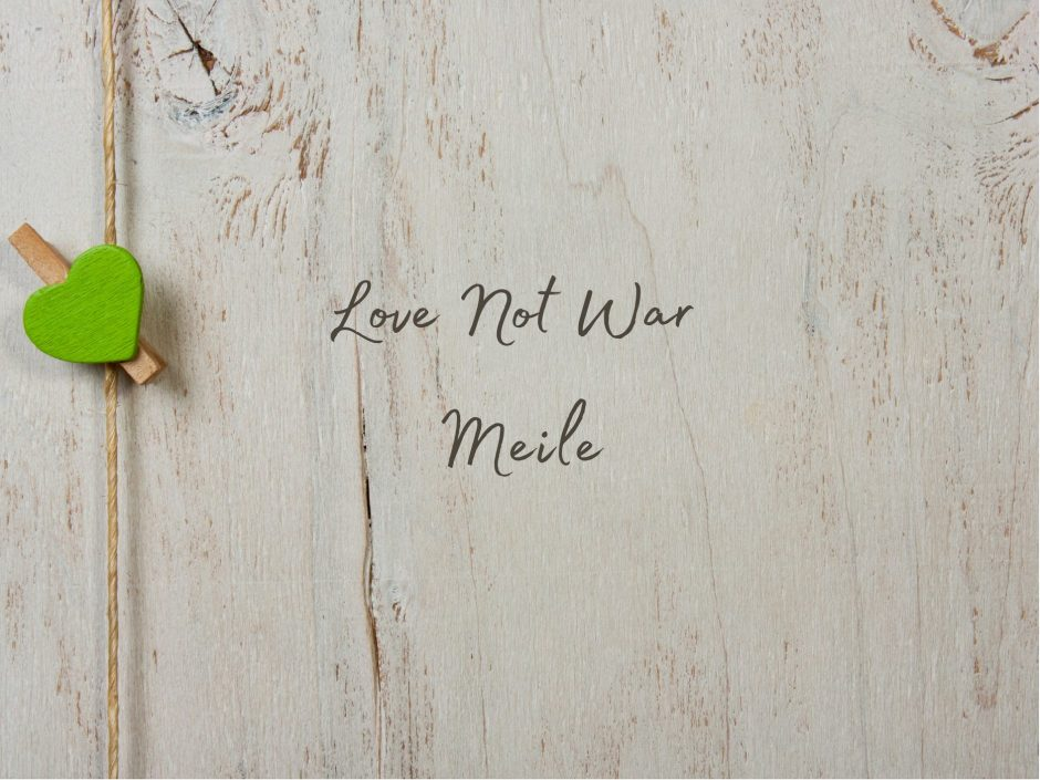 Header image for Love Not War Meile sex toy review of clit vibrator