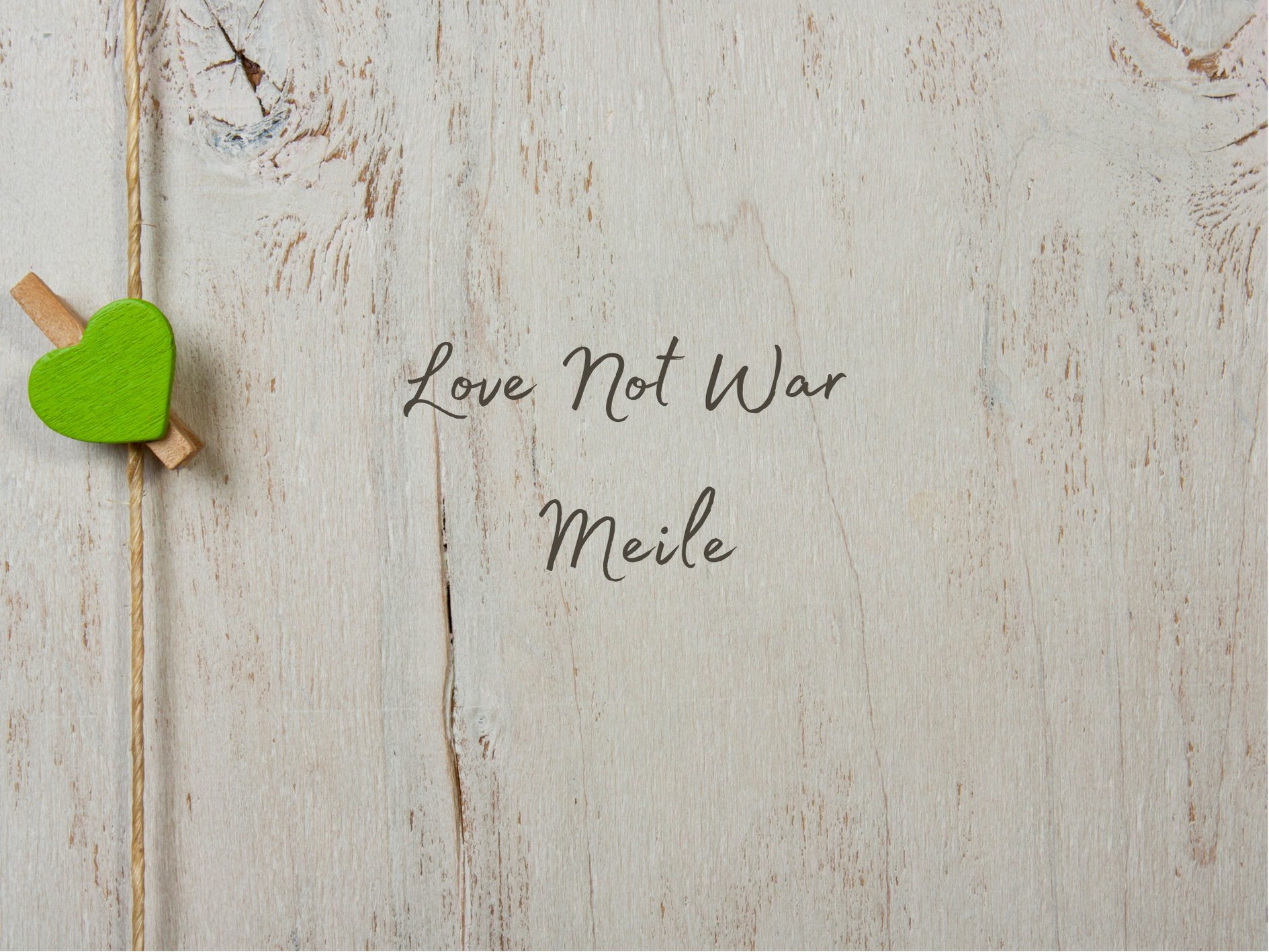 [Toy Review] Lovehoney Love Not War Meile