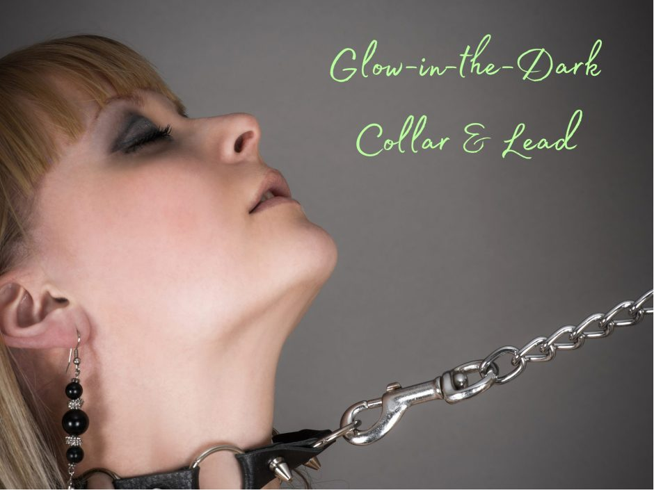 Header for glow-in-the-dark collar and lead review